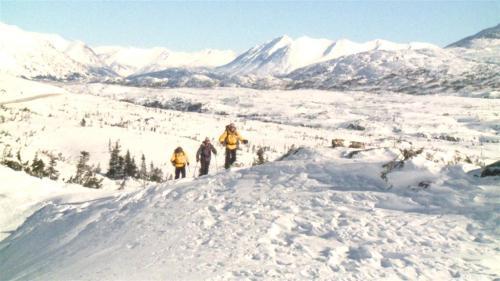 Yukon Avalanche Association (1) (Large)